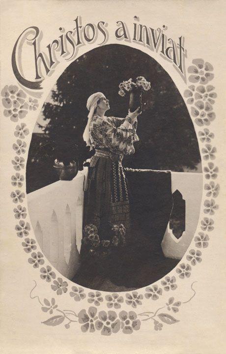 regina maria lansare site